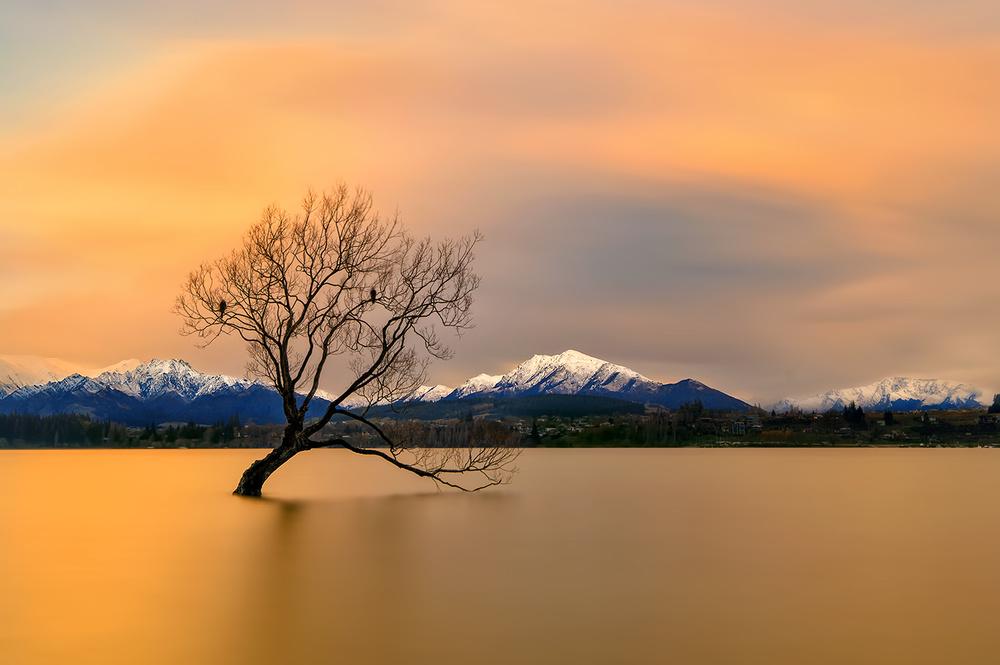 A piece of fine art art photography titled Morning Glow of the Lake Wanaka by Hua Zhu