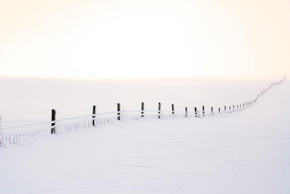 A piece of fine art art photography titled The Fence by Jørgen Opsann