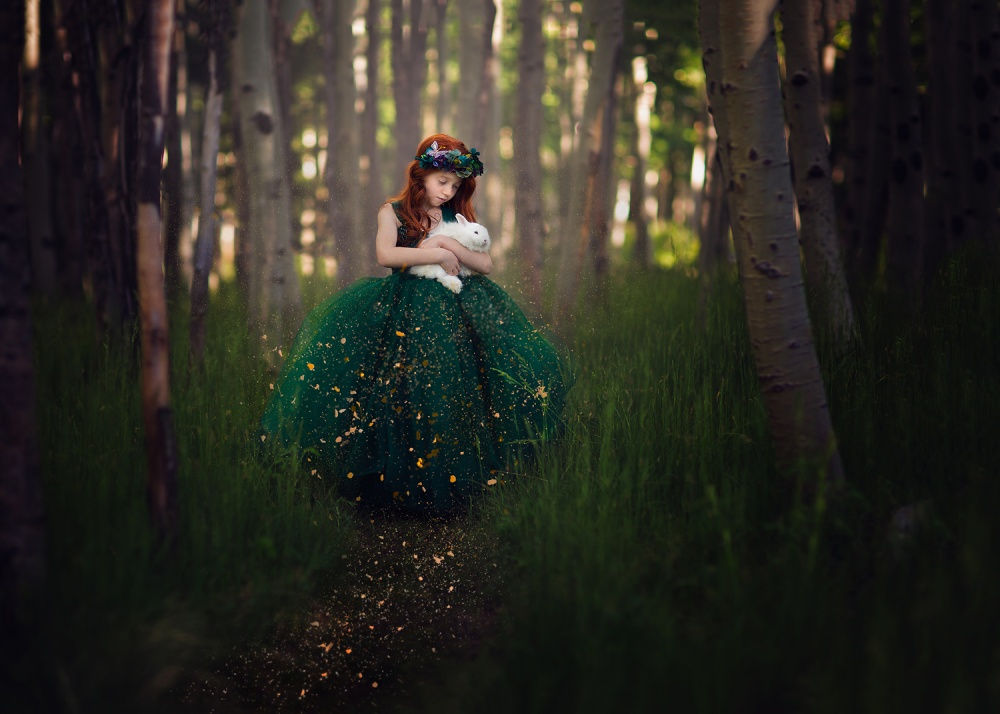 A piece of fine art art photography titled Forest Magic by Lisa Holloway