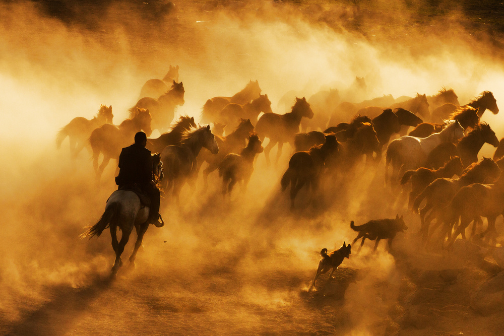 A piece of fine art art photography titled Cowboy by feyzullah tunc