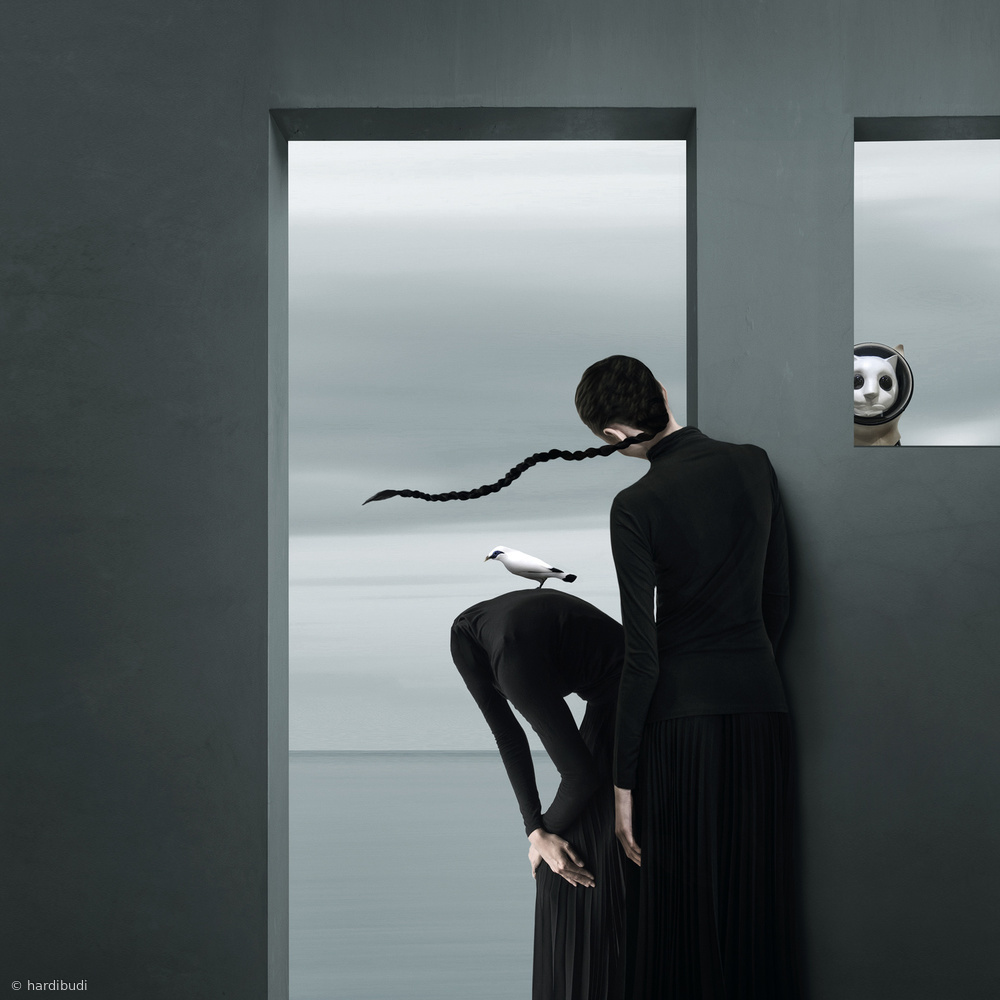 View this piece of fine art photography titled Who Stolen Your Head? by hardibudi