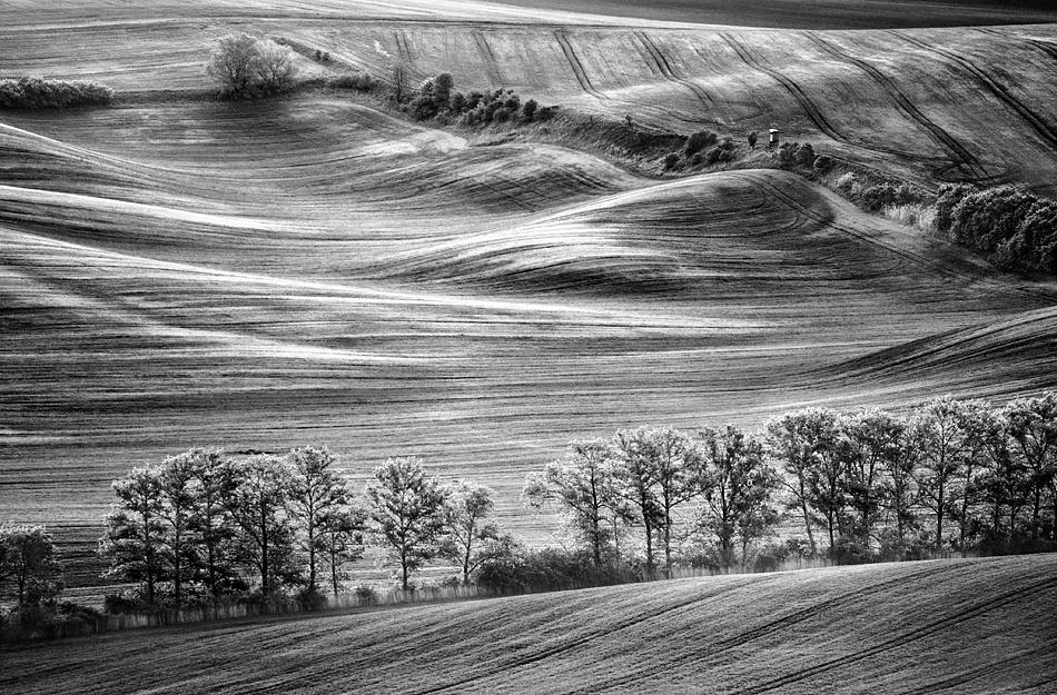 A piece of fine art art photography titled Field by Krzysztof Browko