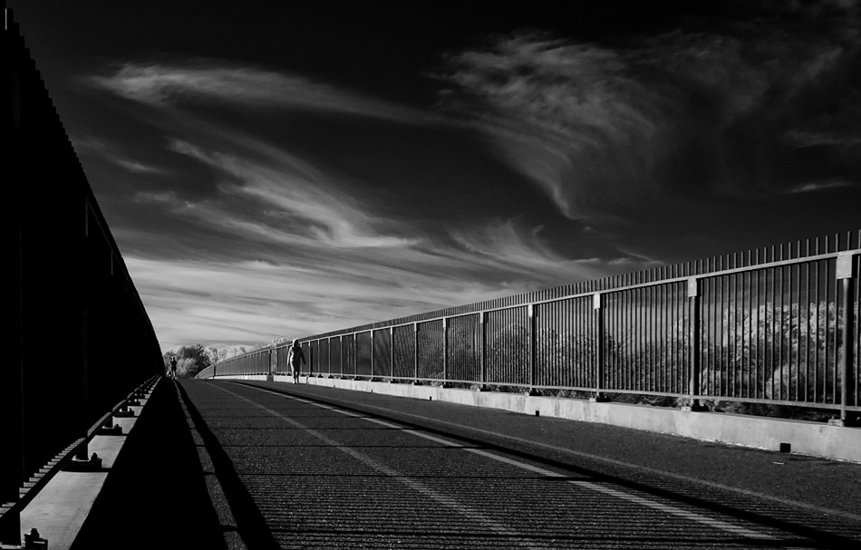 A piece of fine art art photography titled Morning Walk by David A. Evans