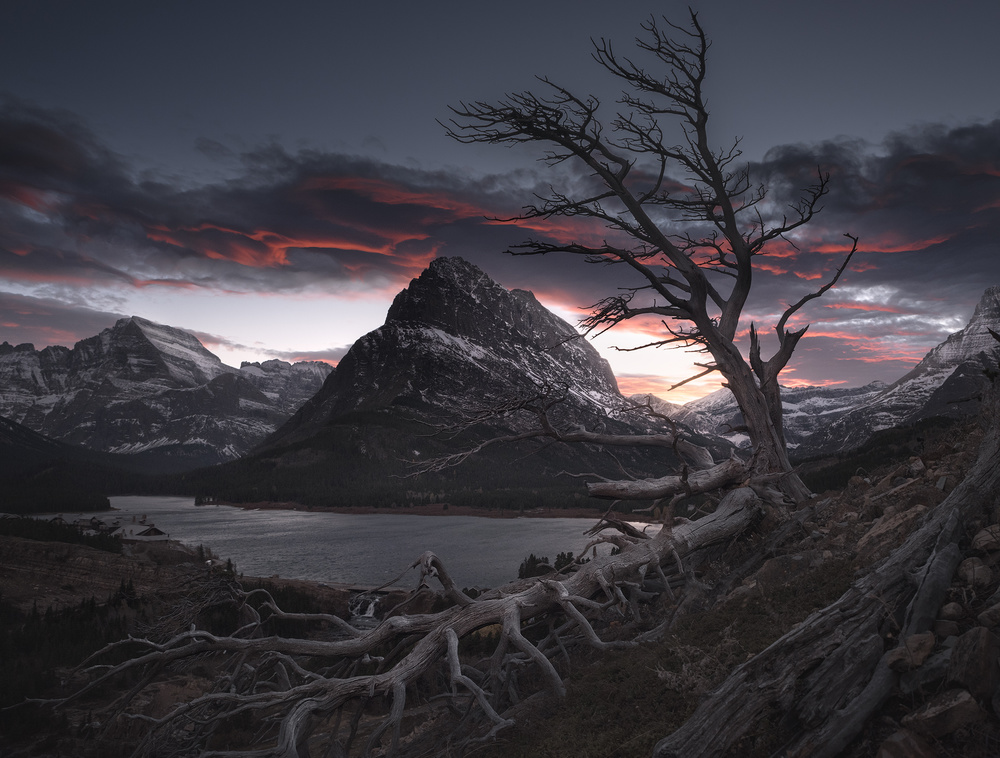 A piece of fine art art photography titled Swiftcurrent Snag by Blake Randall