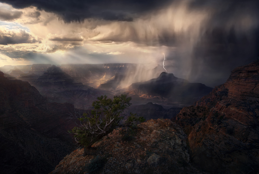 A piece of fine art art photography titled Fearless by Marc Adamus