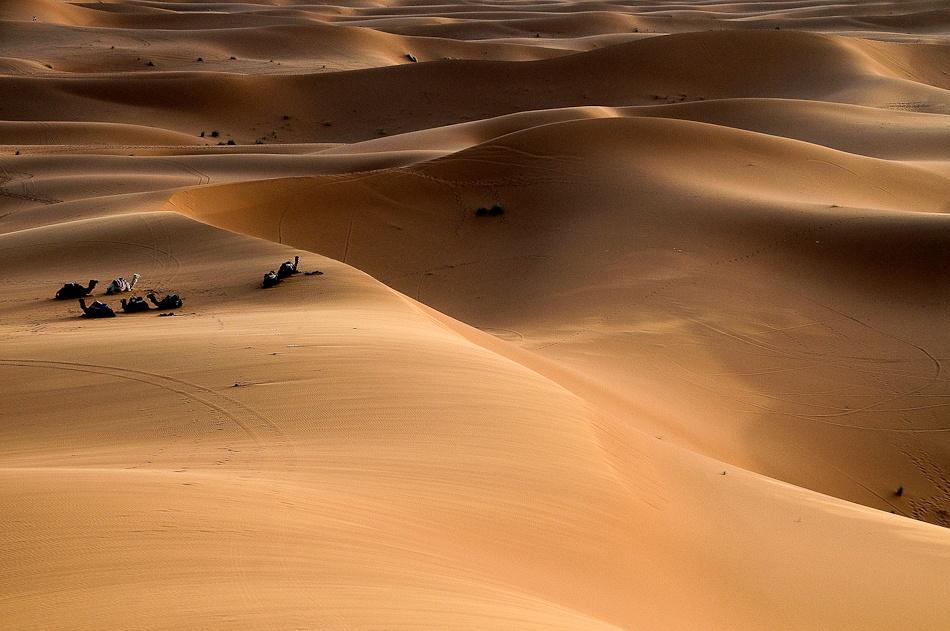 A piece of fine art art photography titled Sahara Desert, Morocco by frankenstein