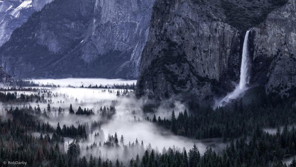 Spring In the Yosemite Valley