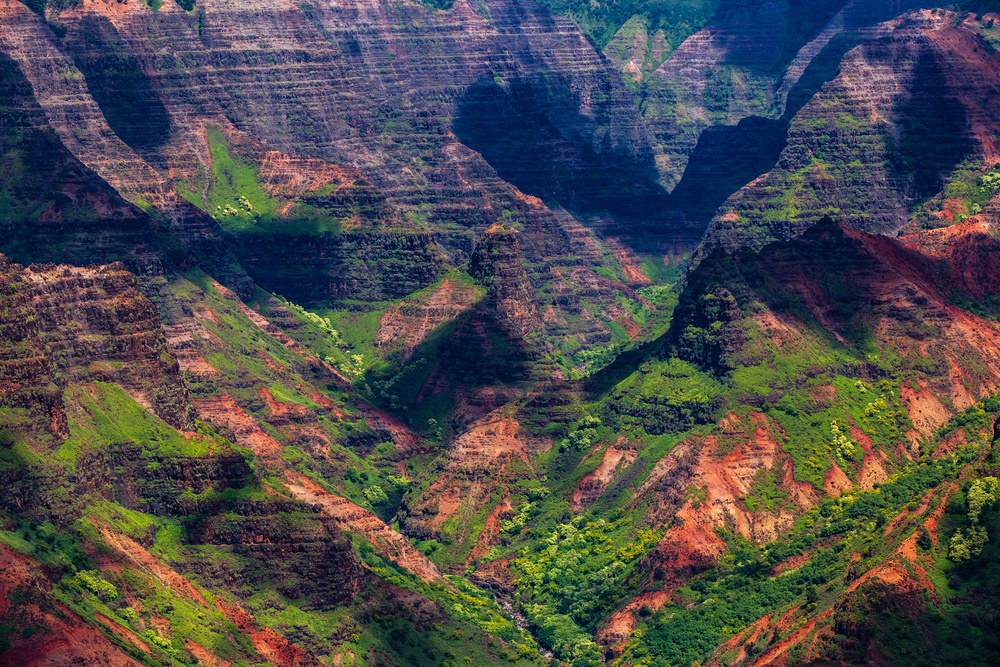 A piece of fine art art photography titled Lush Gorge by Francois Roughol