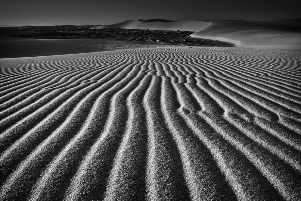 A piece of fine art art photography titled Wind Combed Sand by Lydia Jacobs