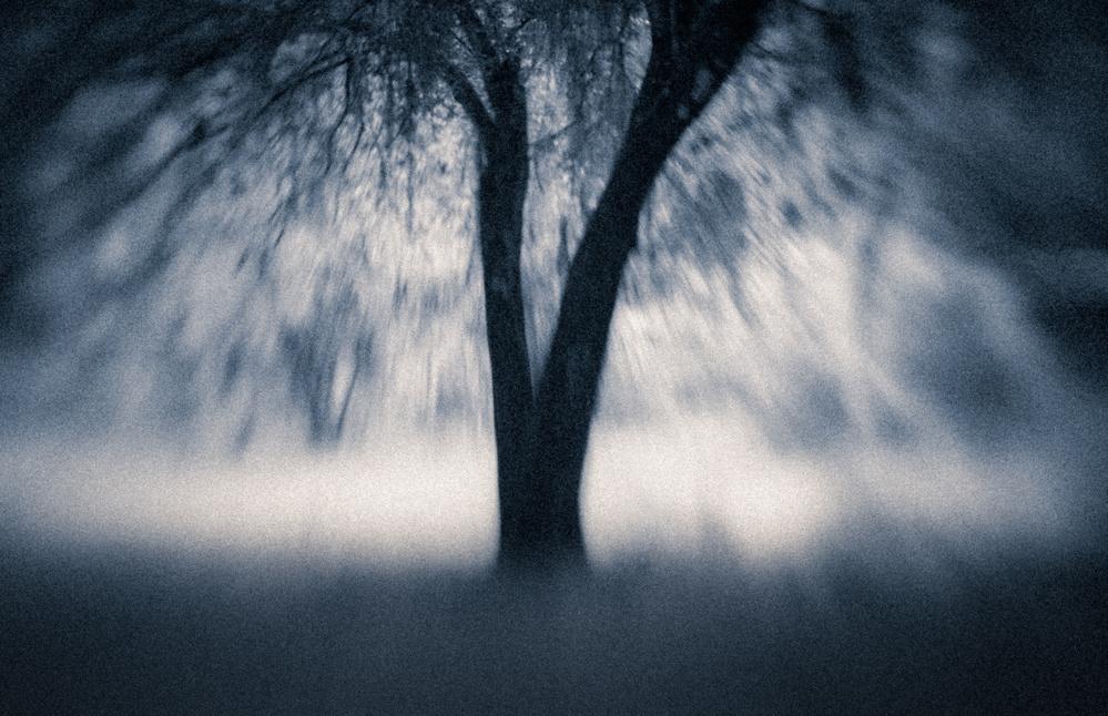 A piece of fine art art photography titled Adieu by Cheryl Slechta
