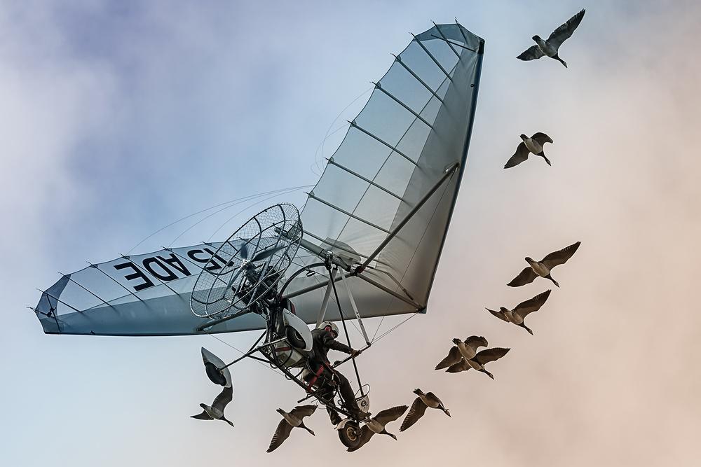 A piece of fine art art photography titled The Birdman by Erhard Batzdorf