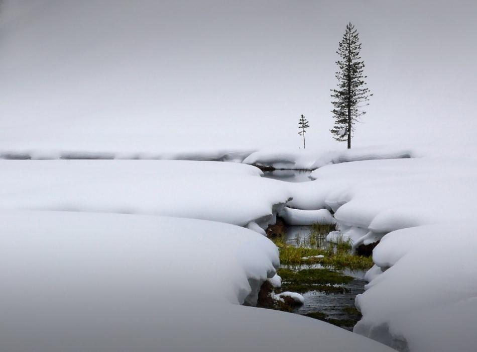 A piece of fine art art photography titled Silence by kregon