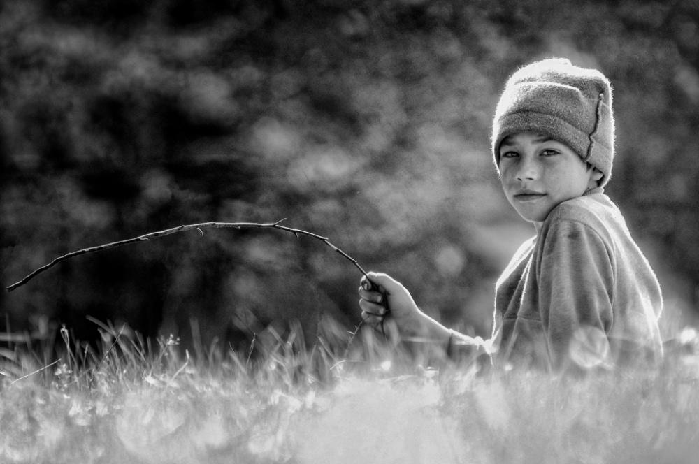 The little shepherd