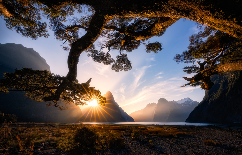 A piece of fine art art photography titled Sunny Day In Milford Sound by Jingshu Zhu