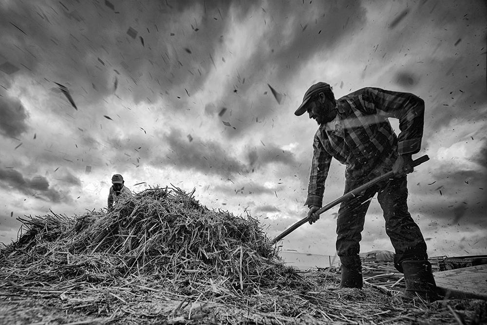 A piece of fine art art photography titled Çiftçi (Farmer) by Caner Başer