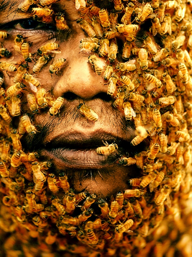 A piece of fine art art photography titled King of Bees by Rizal Adi Dharma