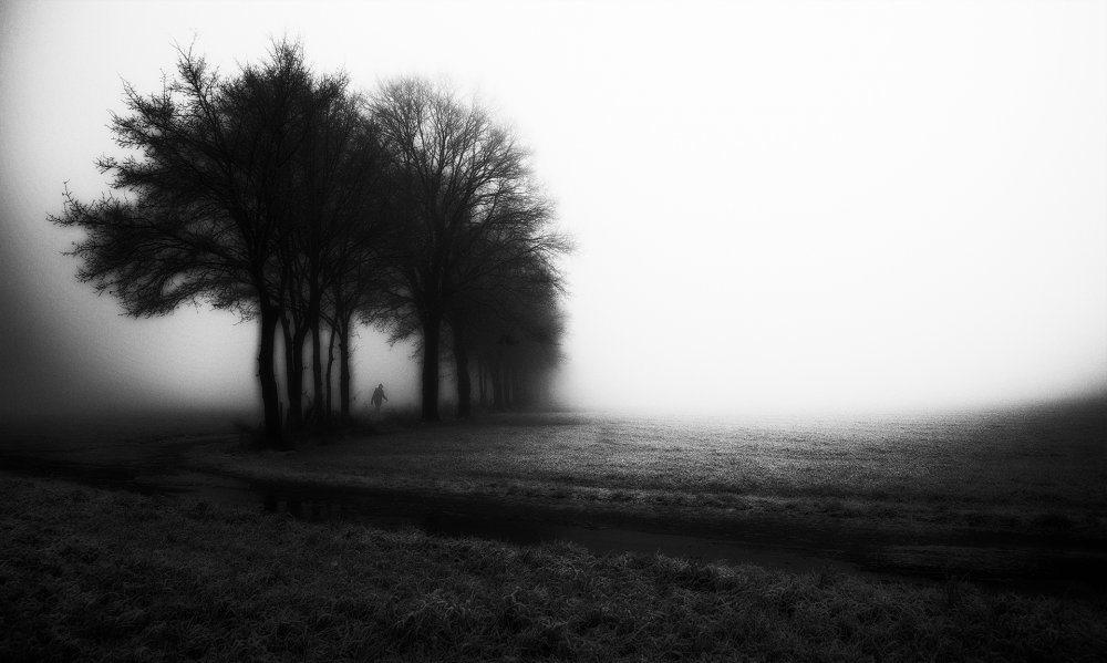 A piece of fine art art photography titled Morning by alfons paesen