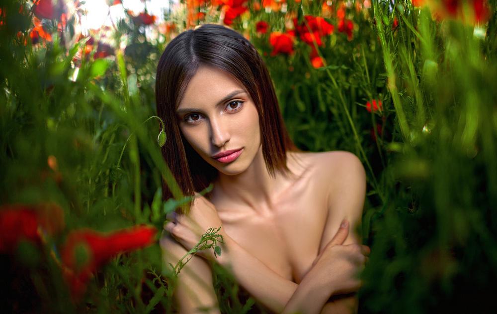 Portrait of Dimi