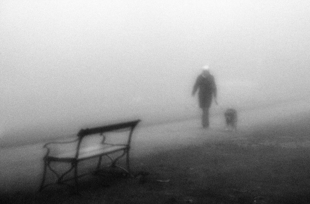 A piece of fine art art photography titled Morning Walk by Jørgen Feldstedt