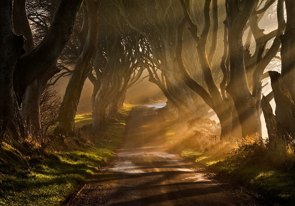 A piece of fine art art photography titled The Road Goes Ever On & On by Gary McParland