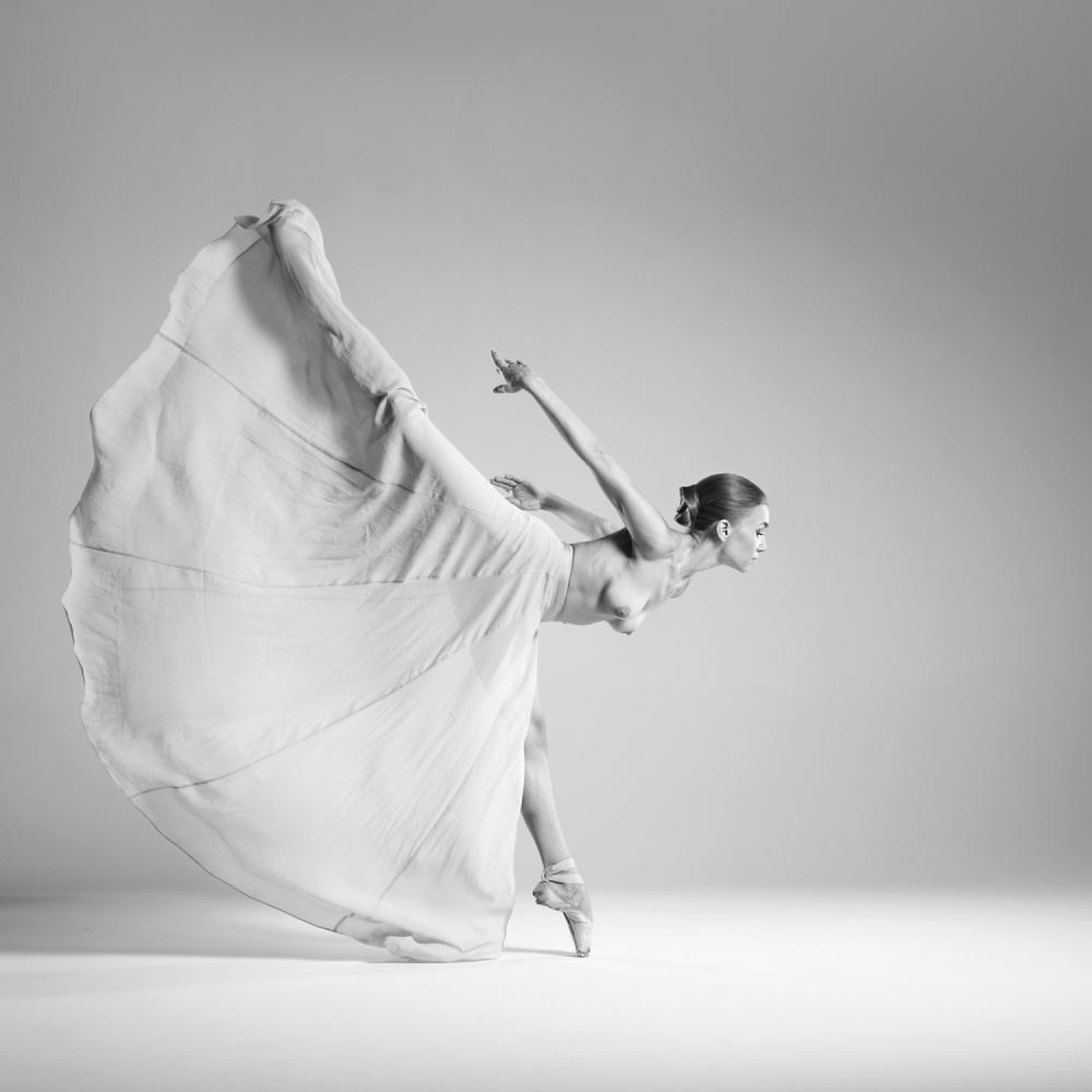 A piece of fine art art photography titled Butterfly by Arkadiusz Branicki