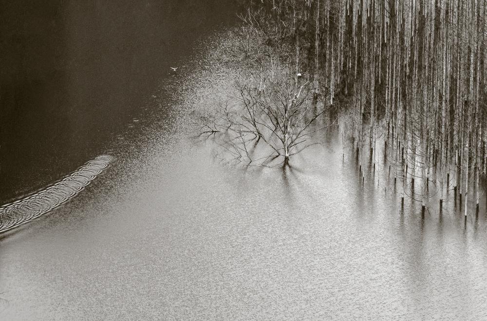 A piece of fine art art photography titled Blue Pond 2 by Eunice kim