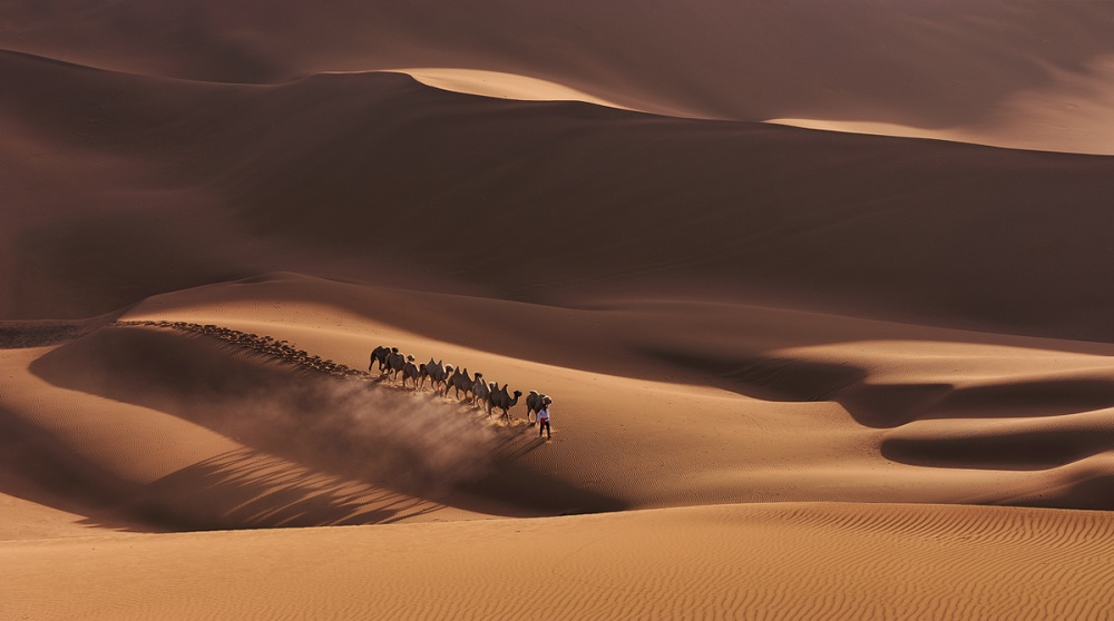 A piece of fine art art photography titled Shadows In the Desert by Mei Xu