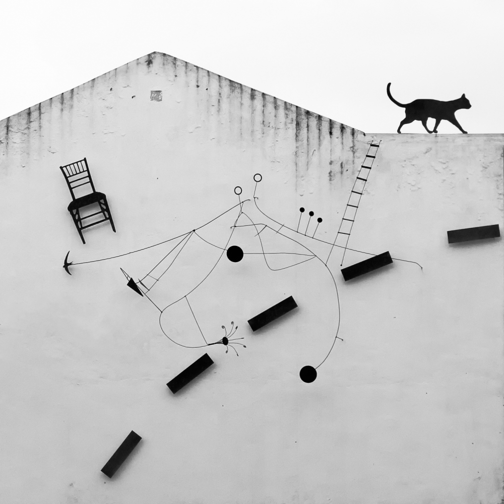 A piece of fine art art photography titled Black Cat by Andrés Gámiz