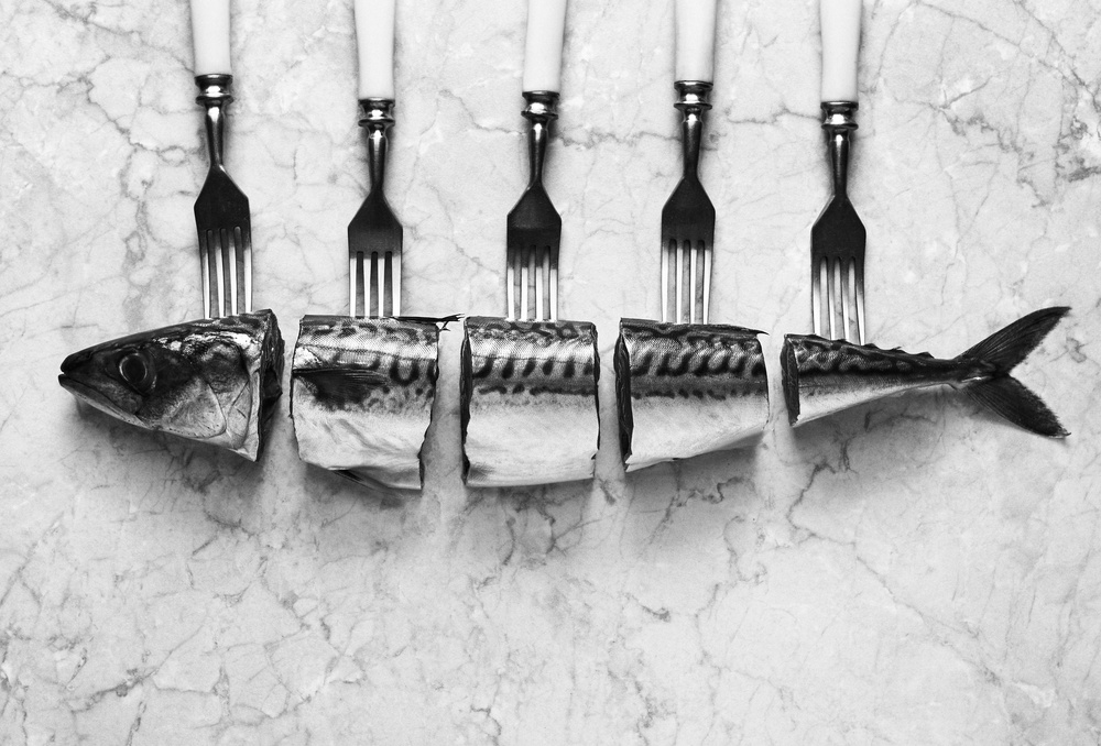 A piece of fine art art photography titled Mackerel&Forks by Aleksandrova Karina