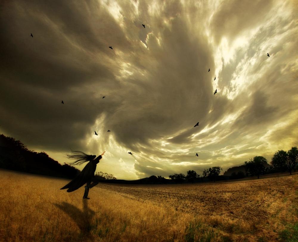 A piece of fine art art photography titled Lichterflug by Kaveh Hosseini (Steppenwolf)
