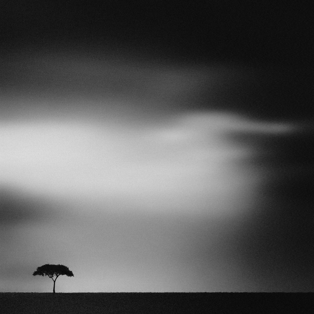 A piece of fine art art photography titled The Plains by Piet Flour