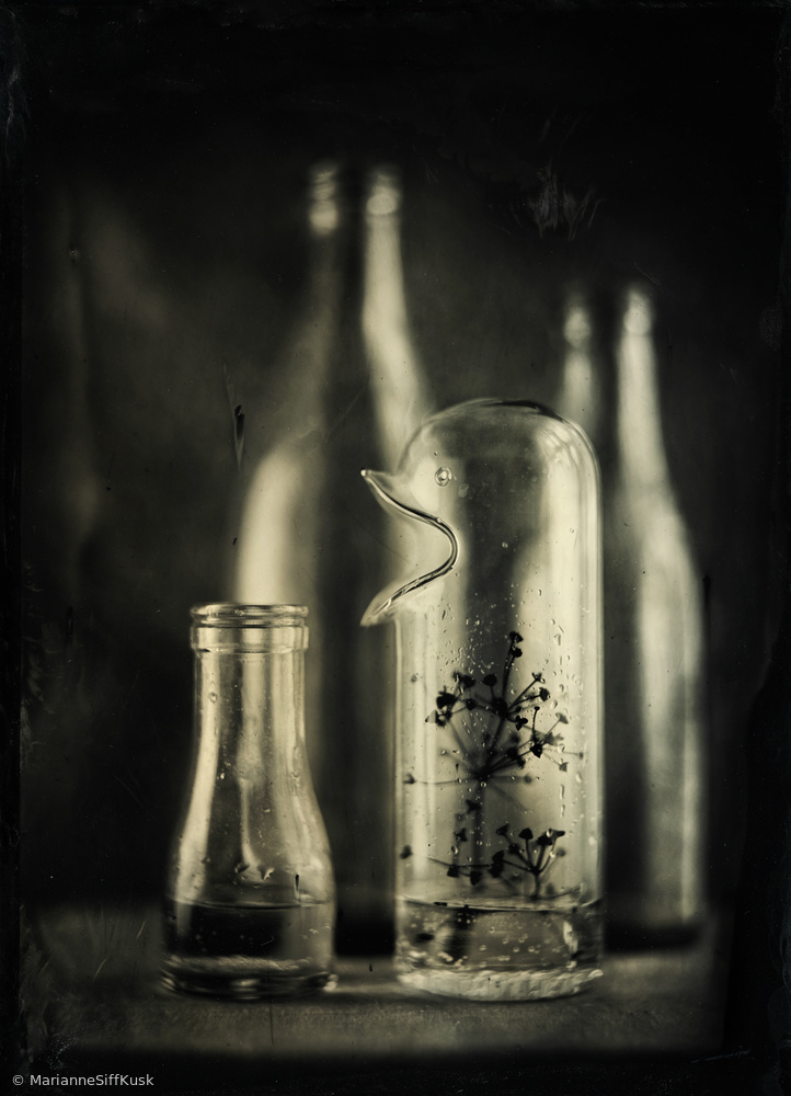 View this piece of fine art photography titled Wet Plate Collodion by Tatyana Skorokhod (Татьяна Скороход)