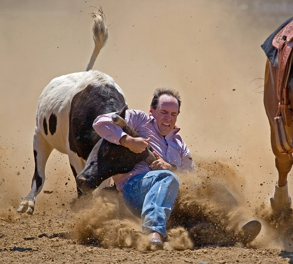 A piece of fine art art photography titled Whoa Steer! by Jim Thode