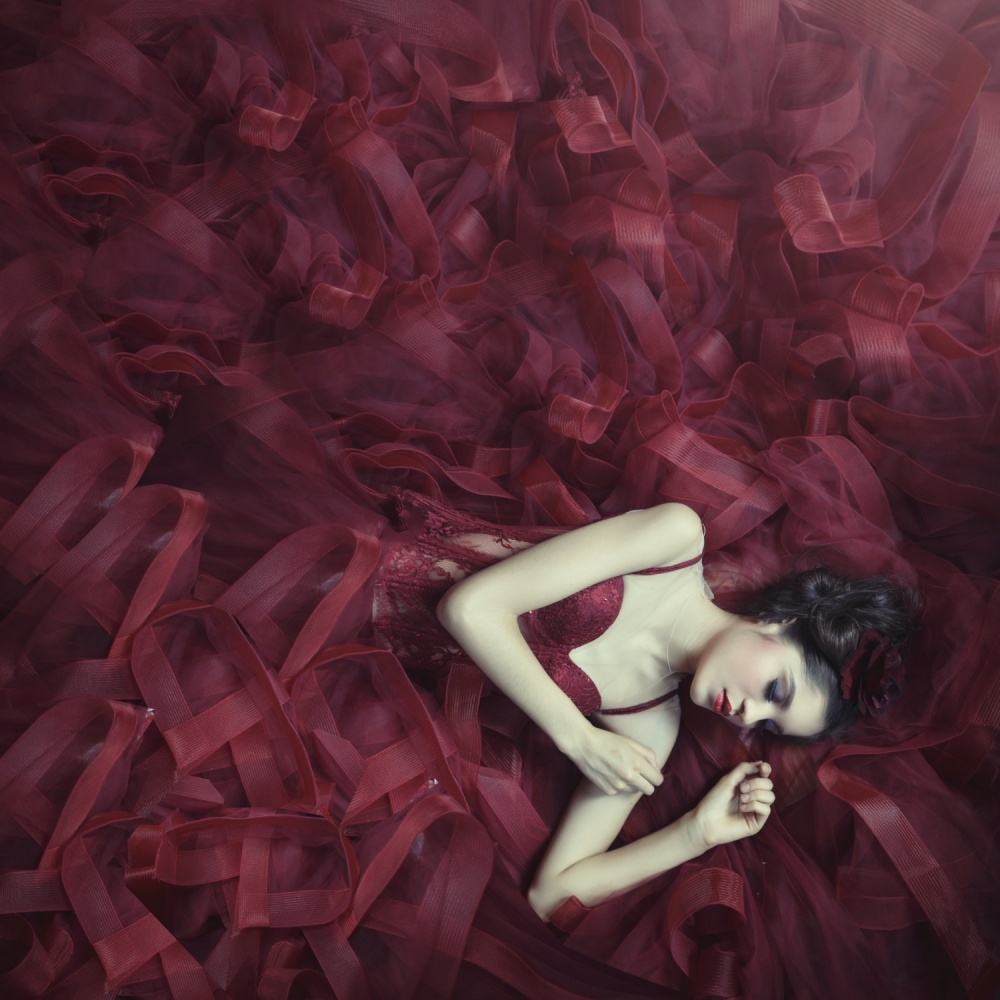 A piece of fine art art photography titled Red Blossom by hardibudi