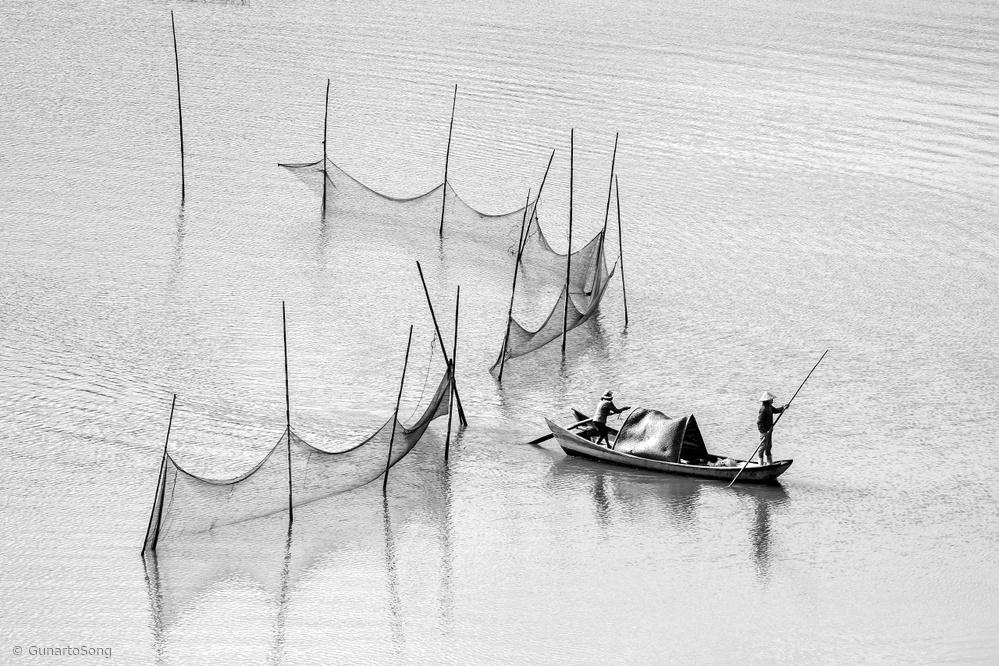 Let's Sailing