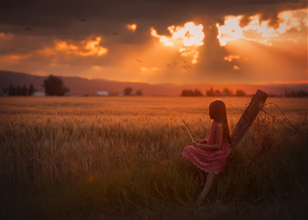 A piece of fine art art photography titled Montana Summer by Lisa Holloway
