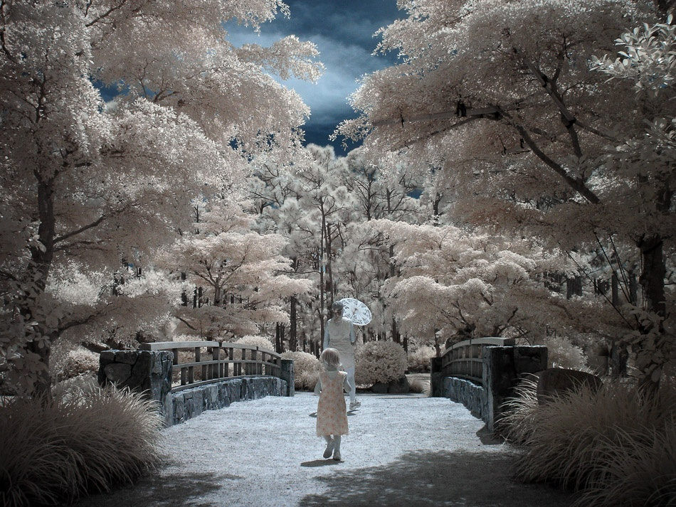 A piece of fine art art photography titled Stroll Into a Fairy Tale by Kort Kramer