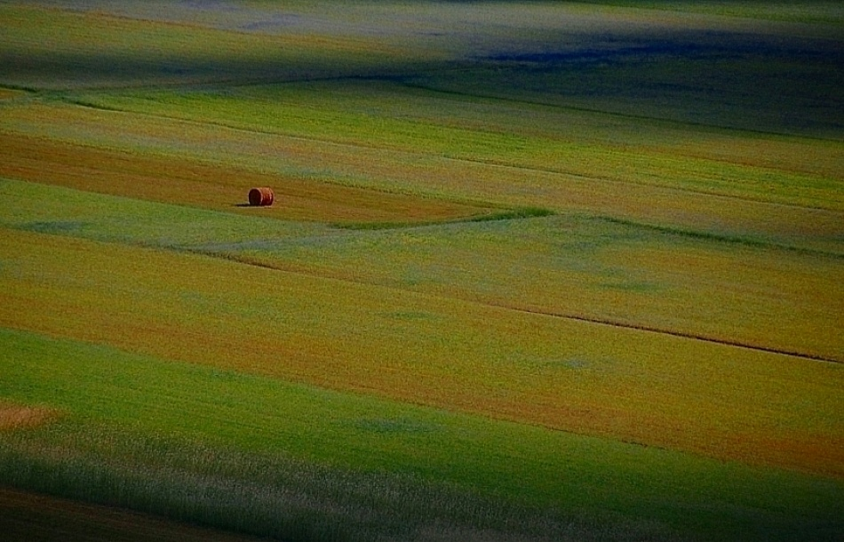 A piece of fine art art photography titled Impressionist Fields by Riccardo Monaco