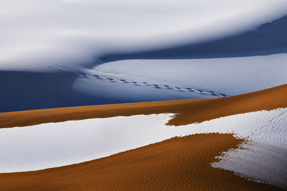 It's snowing in the desert