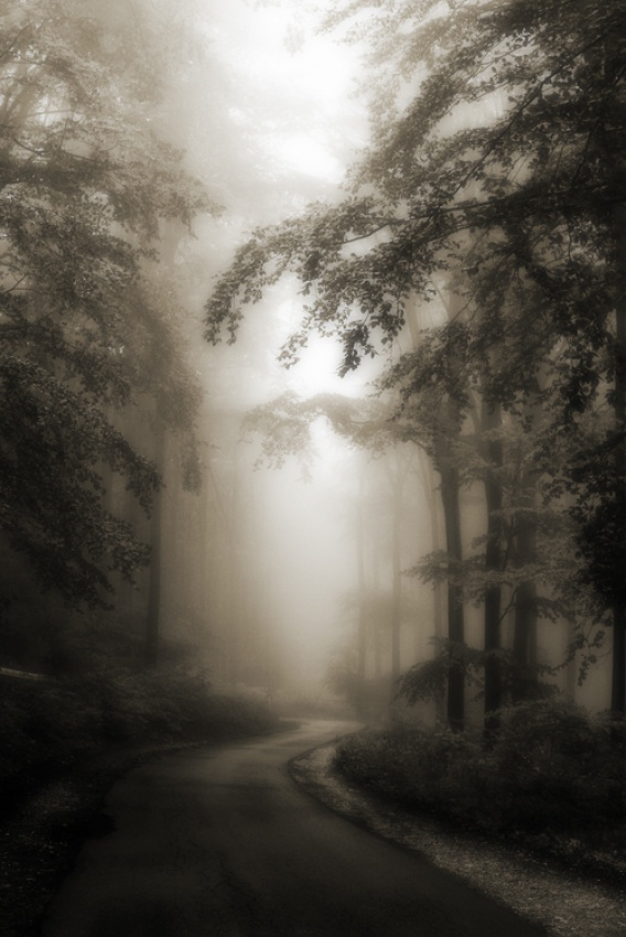 A piece of fine art art photography titled My Dream Road by szepare