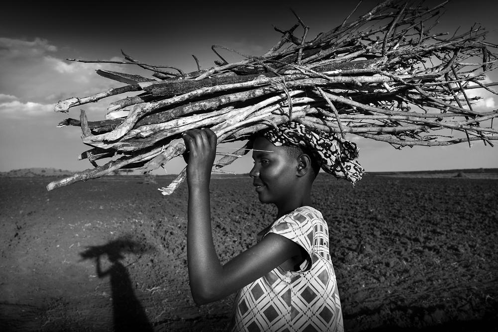 A piece of fine art art photography titled I Follow My Shadow by Norbert Becke
