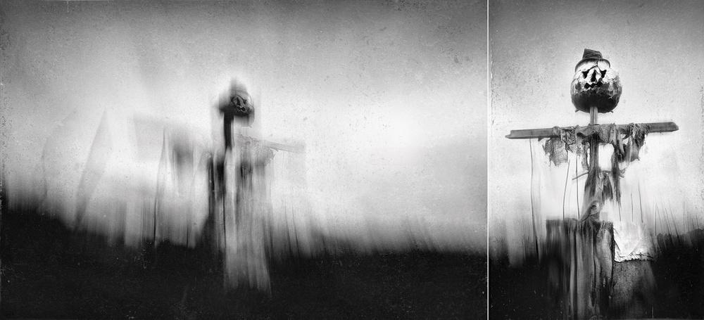 A piece of fine art art photography titled Silent Guard II by Darko Cuder