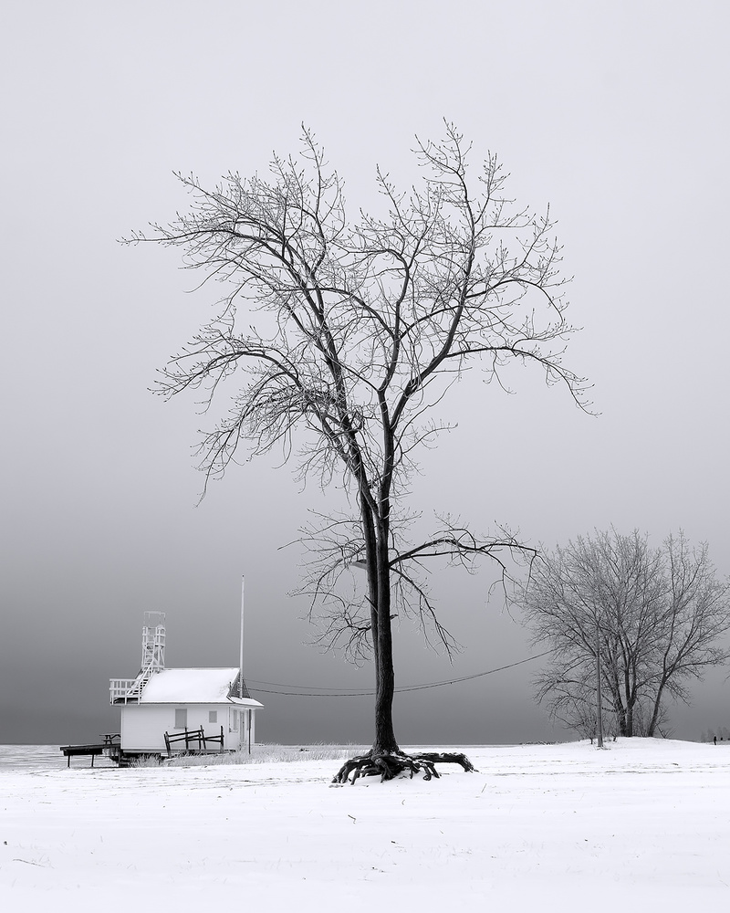 A piece of fine art art photography titled Winterscape I by Calin Hanchevici