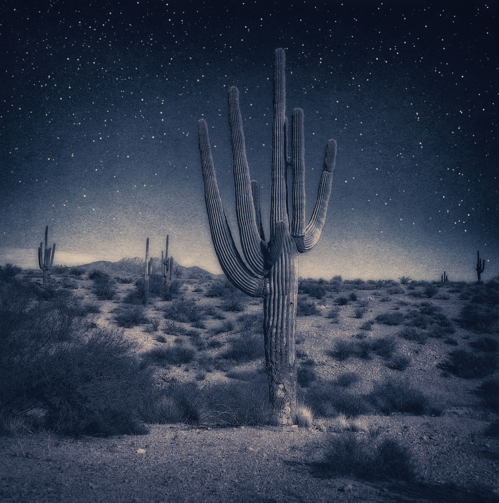 Passing through Arizona