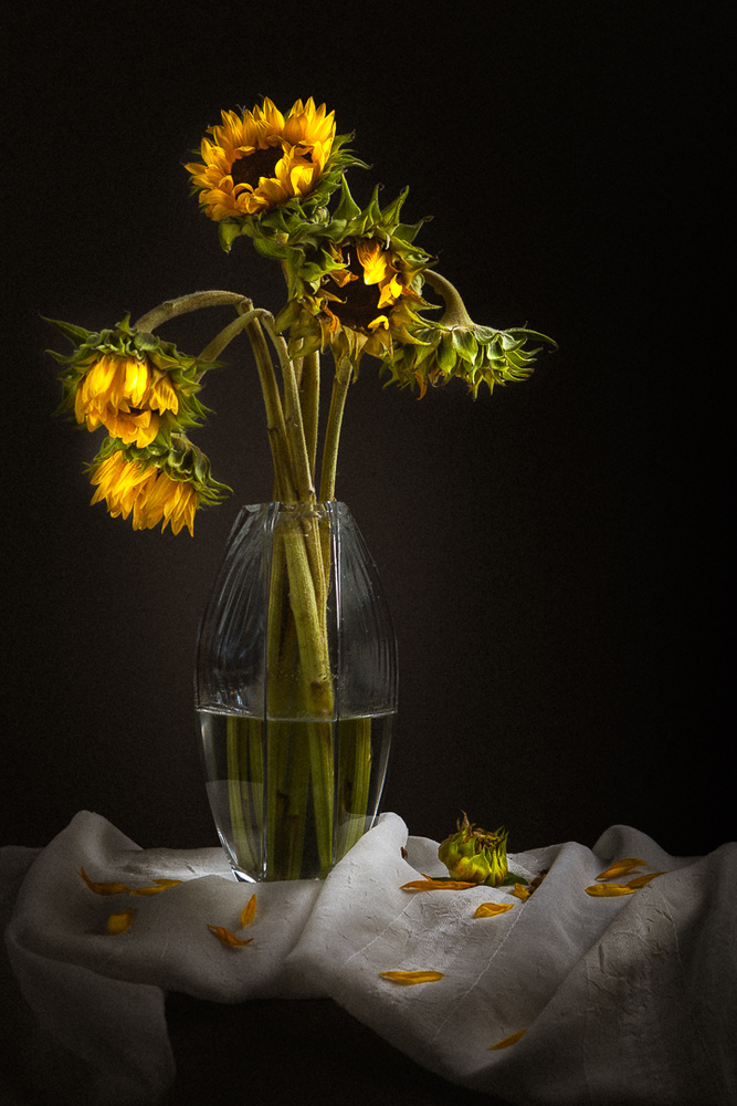 A piece of fine art art photography titled Partly Sunny by Redmere Photography