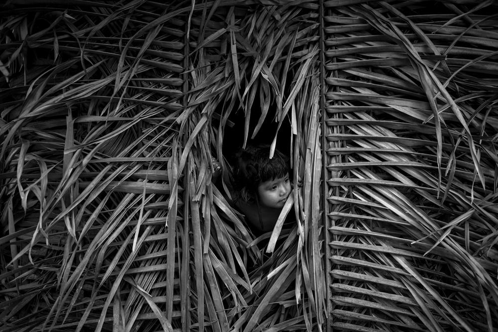 A piece of fine art art photography titled Awá Guajá by Daniel Rodrigues