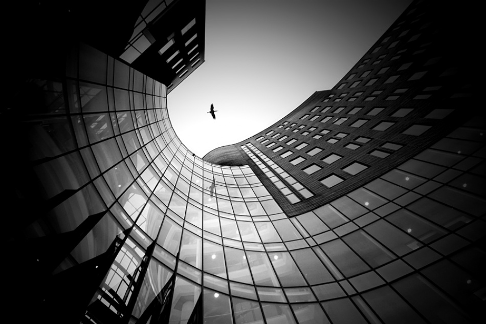A piece of fine art art photography titled Flying High by theo peekstok