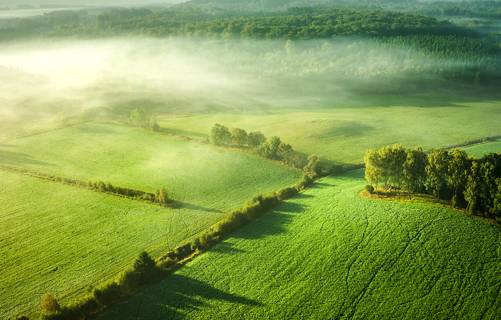 A piece of fine art art photography titled Above the Mist by keller