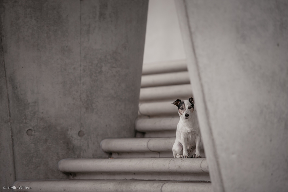 A piece of fine art art photography titled Urbanity by Heike Willers