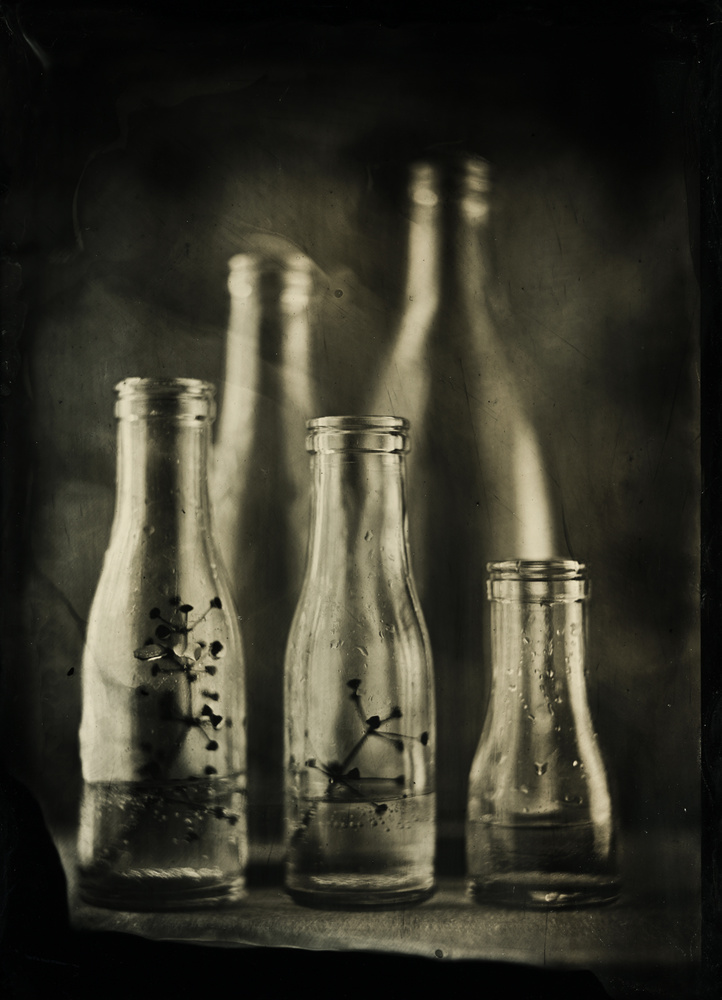 A piece of fine art art photography titled Wet Plate Collodion by Marianne Siff Kusk